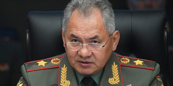Shoigu: Over 133 thousand terrorists killed since Russia's participation in combating terrorism in Syria