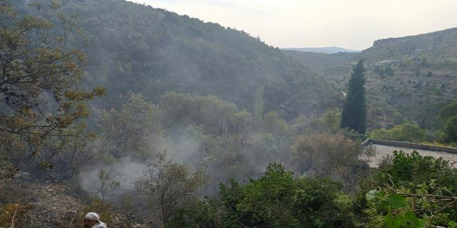 Several fires extinguished in Jableh countryside in Lattakia province