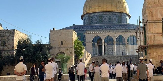 Israeli settlers storm al-Aqsa under protection of occupation forces