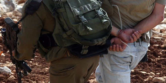 Israeli occupation troops arrest thirteen Palestinians in occupied Jerusalem
