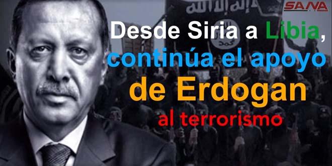 De Siria a Libia.. Erdogan persiste en apoyar el terrorismo. (Infografía en español)