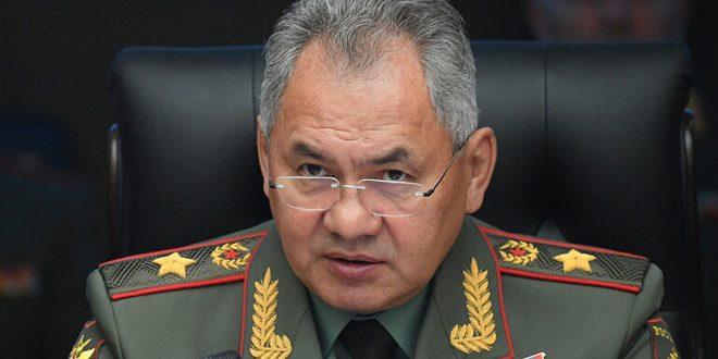 Unos 133 mil terroristas han sido liquidados en Siria, afirma ministro de Defensa de Rusia