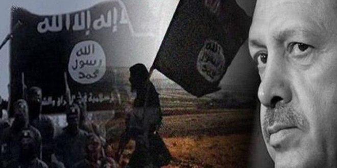 Turquía planea enviar terroristas desde Idlib a la frontera con Grecia
