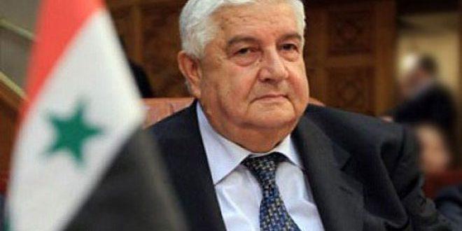 Визит главы МИД Сирии в Россию состоится до конца октября