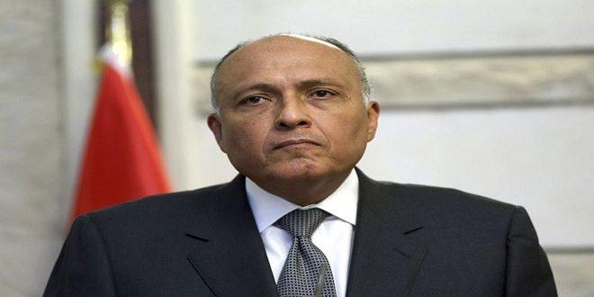 Шукри: Египет стремится квсеобъемлющему политическому урегулированию кризиса в Сирии при сохранении территориальной целостности страны