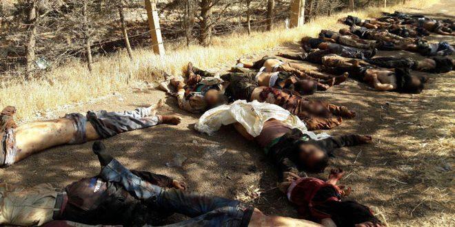 На севере провинции Дараа Сирийская армия вновь отразила атаку террористов на позиции батальона «Аль-Махджура»