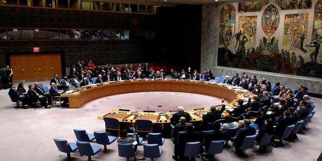 СБ ООН одобрил продление расследования применения химоружия в Сирии