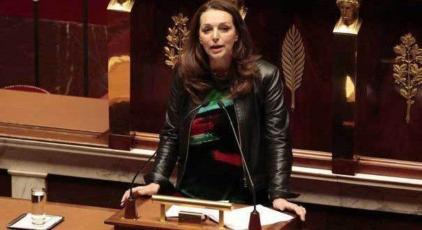 Французский парламентарий: Участие России на стороне Сирийской армии в войне с терроризмом способствовало отступлению ДАИШ
