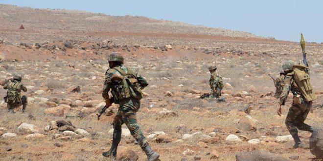 Сводка контртеррористических операций Сирийской армии за 25 ноября