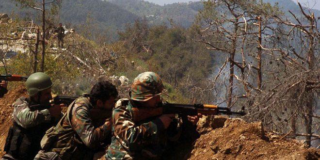 Сводка контртеррористических операций Сирийской армии за 14 ноября