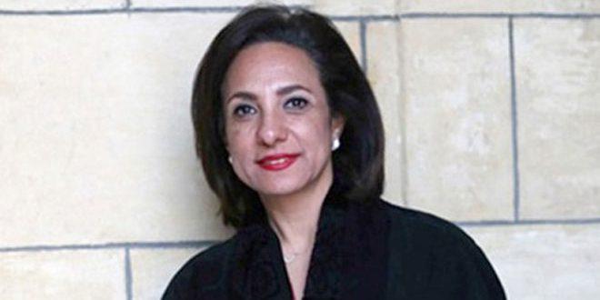 Египетский парламентарий: Кризис в Сирии может быть урегулирован только политическим путем