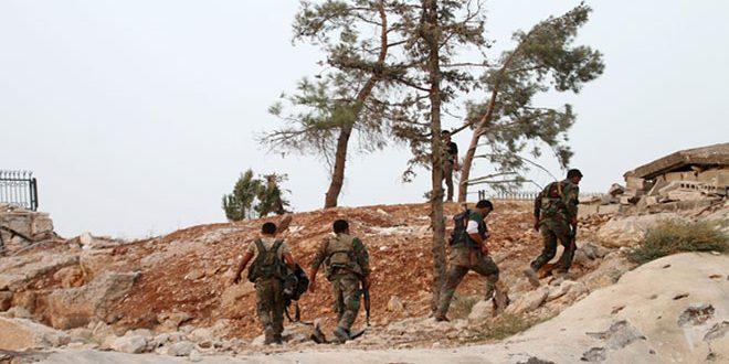 Сводка контртеррористических операций Сирийской армии за 22 ноября