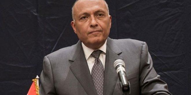 Глава МИД Египта: Политическое решение – это единственный способ урегулировать кризис в Сирии