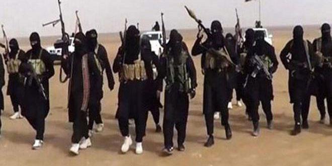 Терроризм в сирии доклад 9768