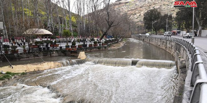 В Дамаске река Барада вновь наполнилась водой