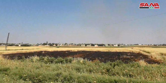 На севере провинции Хама сожжены сельскохозяйственные поля в результате новой террористической атаки