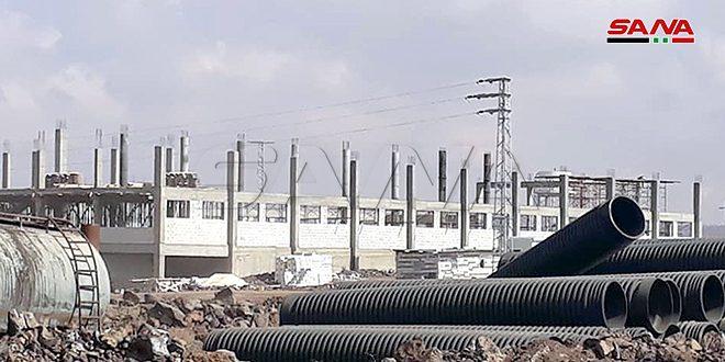 В Сувейде 42 промышленных предприятия начали процедуру лицензирования