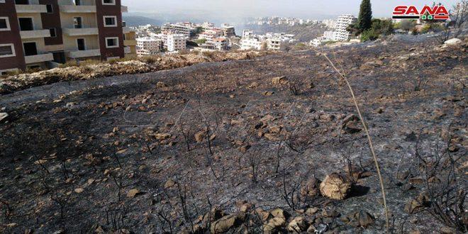 Пожарные бригады тушат пожары в провинциях Латакия и Хомс