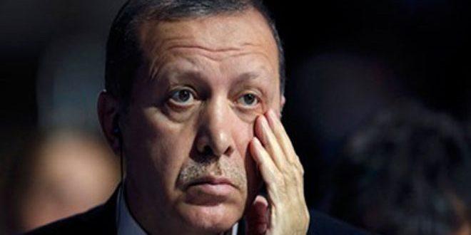 Чешский политический обозреватель: Эрдоган поддерживает опасных террористов в Сирии