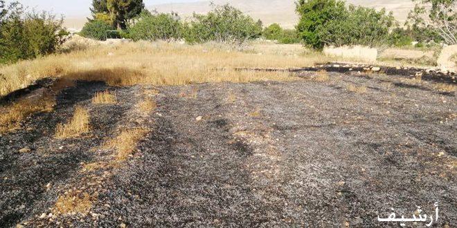 В провинции Дараа пожарники потушили 18 пожаров