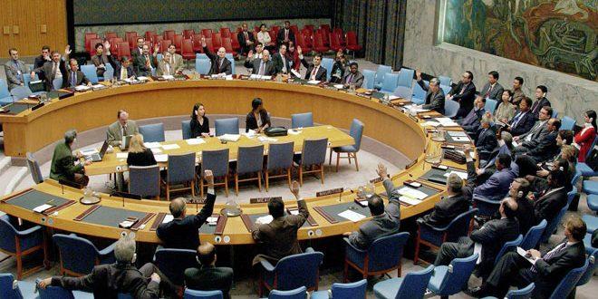 Совет Безопасности ООН не принял российский проект резолюции о доставке гуманитарной помощи Сирии