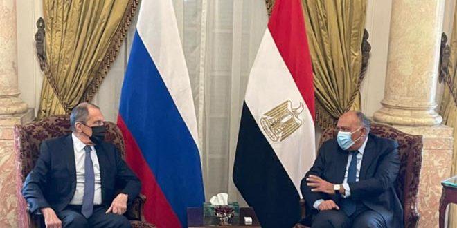 Лавров и Шукри подтвердили необходимость политического урегулирования кризиса в Сирии