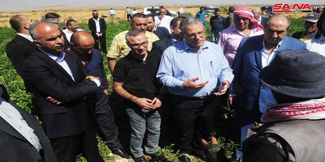 Министр сельского хозяйства: К распределению готовы 70 тысяч тонн семян пшеницы и 50 тысяч тонн удобрений