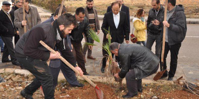 Baas Üniversitesi Homs ta bitki örtüsünü pekiştirme amaçlı fidan dikme