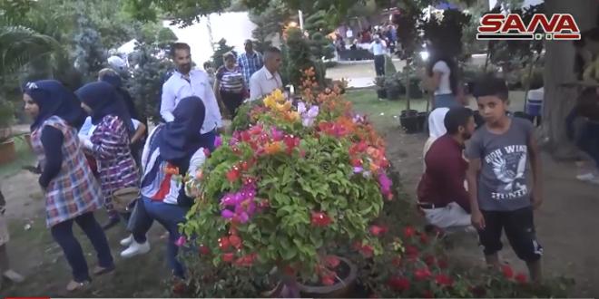 Festival Etkinlikleri Halkın Yoğun İlgisiyle Devam Ediyor (video)