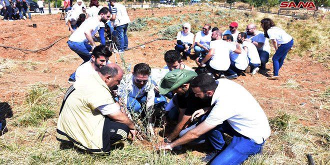 Halep'te Dünya Barış Günü Faaliyetleri