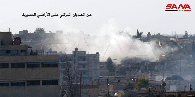 Türk rejiminin terörist çeteleri, işgal altındaki Halep'in Afrin bölgesinde, yüzlerce zeytin ağacını kesti