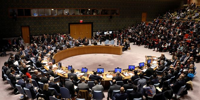 Security Council: Turkish aggression on Syrian territories undermines regional stability, security