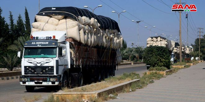 Process of cotton marketing starts in Deir Ezzor province
