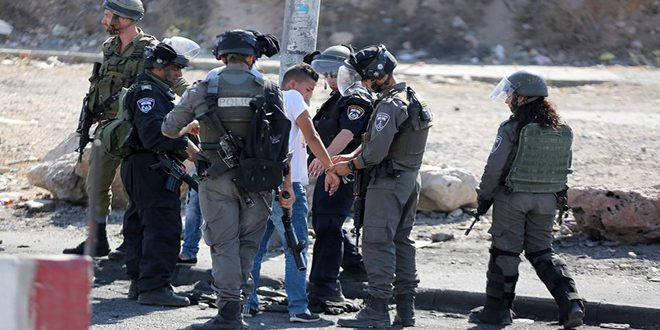 Several Palestinians arrested and injured in an Israeli occupation raid on  Jenin refugee camp