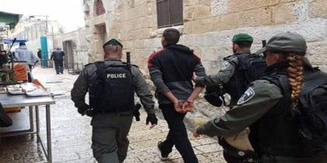 Israeli occupation forces arrest 12 Palestinians in Tubas