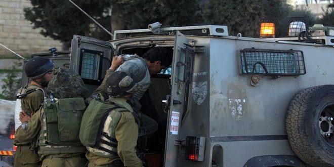 Israeli occupation forces arrest four Palestinians in  West Bank