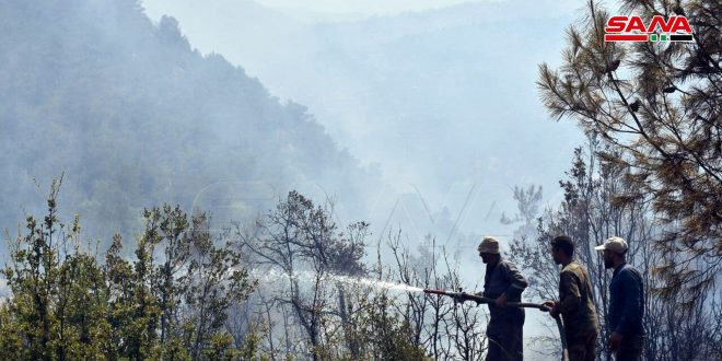 Fire of Akum village in al-Qseir extinguished ..Caretaker Agriculture Minister : it caused damage to plant cover