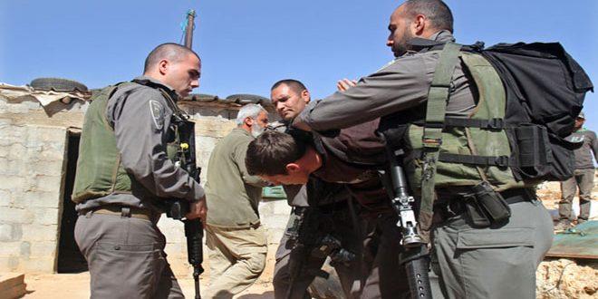 Israeli occupation forces arrest a Palestinian in Jenin
