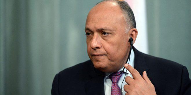 Egipto aspira resolver la crisis siria a través de una solución política