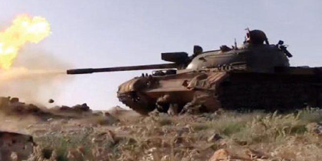 Ejército acaba con terroristas en el campo norte de Hama