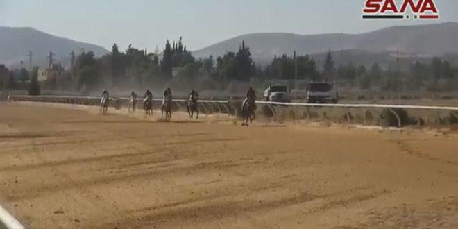 Fuerte competencia en  la carrera de caballos árabes