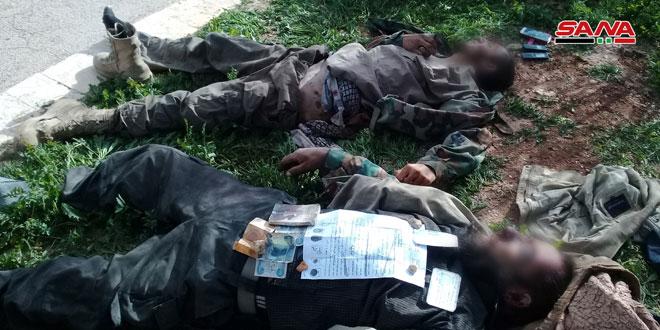 Ejército acaba con terroristas que intentaron infiltrarse de al-Tanf hacia zonas seguras en el sur de Palmira