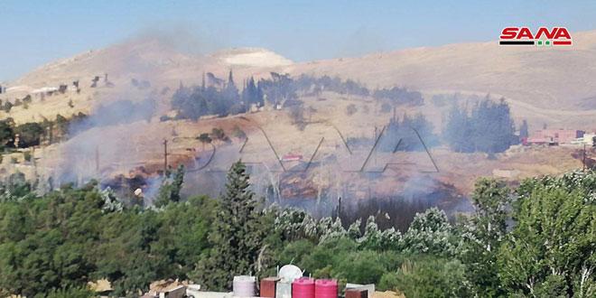 Incendio en la región de Hameh causa dos heridos