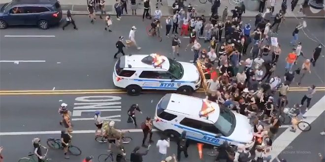Vean como los policías en EE.UU arrollan y reprimen a los manifestantes