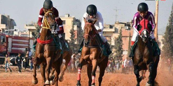 Concluyen competencias de la quinta carrera de caballos árabes en Hama