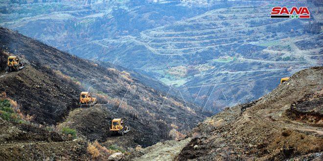 Rehabilitar las tierras de cultivo en las zonas dañadas por los incendios en Latakia