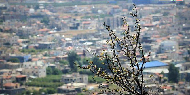 Baqatha, heroico y resistente poblado en el Golán sirio ocupado