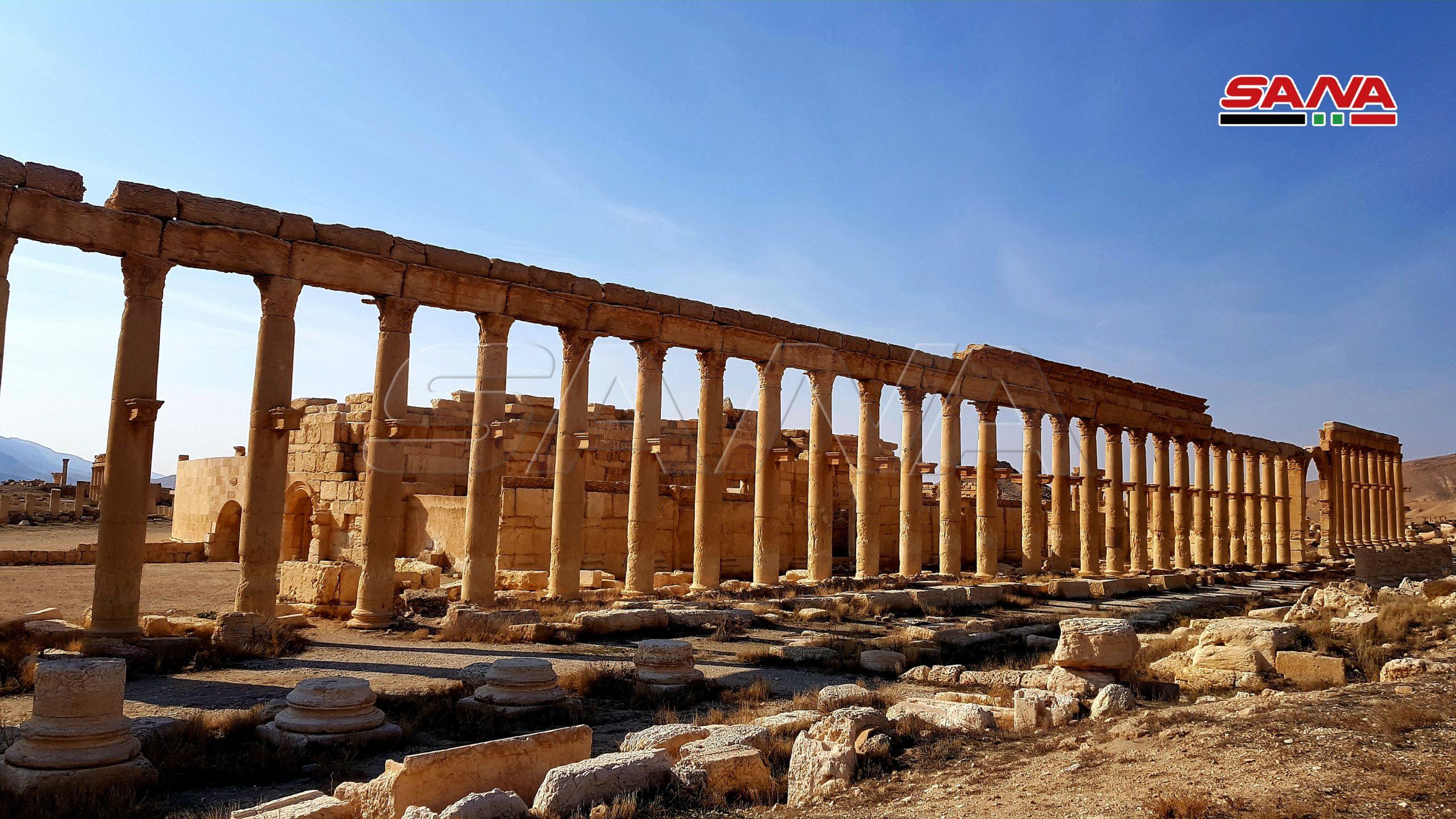 Cabecear Dolor mimar  Palmira, la Perla del Desierto sirio, hoy 7 de enero 2021 – La Agencia  Árabe Siria de Noticias
