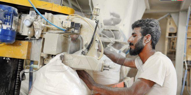 Trabajadores de cereales y molinos…grandes esfuerzos para lograr la seguridad alimentaria