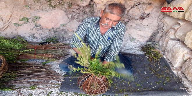 Artesano sirio convierte los ramos de laurel en artesanías tradicionales